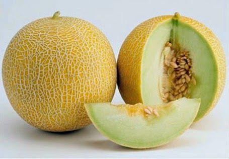 Buah Melon (ilustrasi)