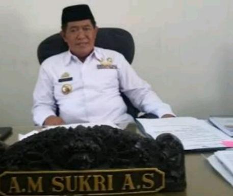 Bupati Bulukumba, AM Sukri Sappewali (IST)