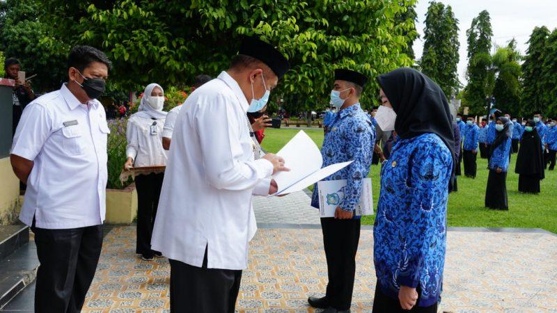 Bupati Bulukumba, AM Sukri Sappewali menyerahkan SK CPNS Tahun 2019. (IST)